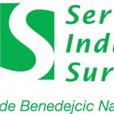 Foto del perfil de Servicios Industriales Sur de Nahuel H. Benedejcic