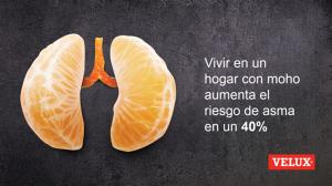 Vivir en un hogar con moho aumenta el riesgo de asma, por Velux