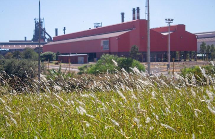 Ternium anuncia un plan de inversiones ambientales de USD 500 millones