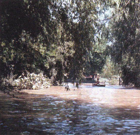 Delta del Paraná, Buenos Aires