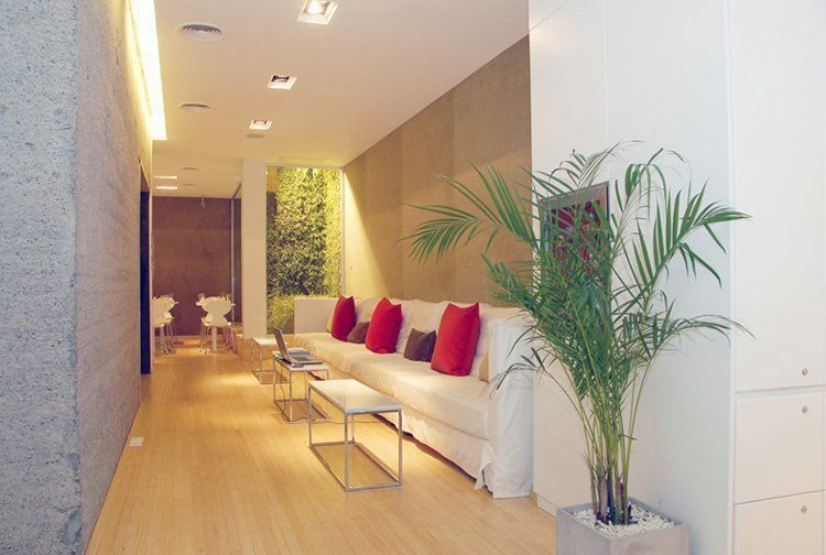Hall Planta Baja
