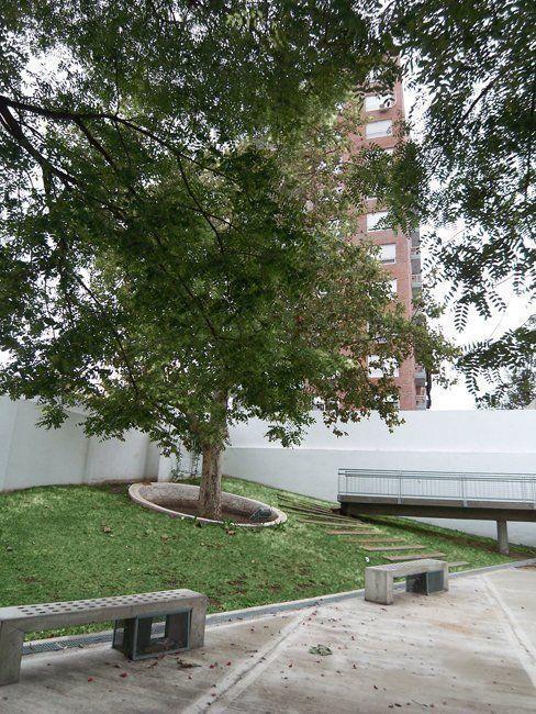 Sector árbol