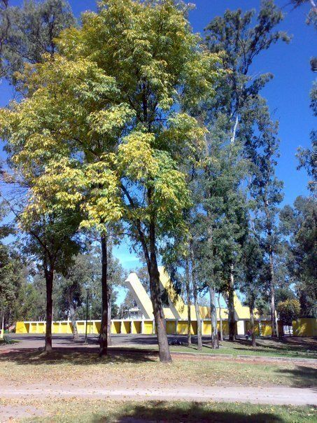 Parque González Gallo