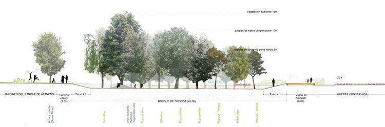 Sección bosque de crecida