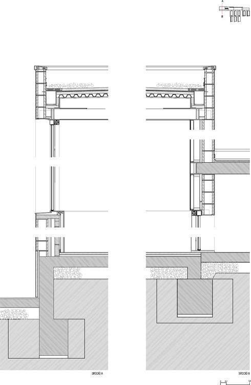 Sección gimnasio