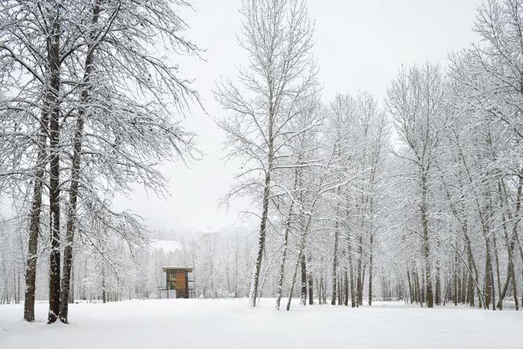 Photo by Tim Bies/Olson Kundig Architects