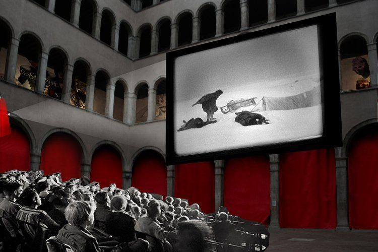 Proposal, courtyard as cinema / Image courtesy OMA