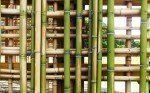 BAMBOO LATTICE DETAIL [BARN 'B']