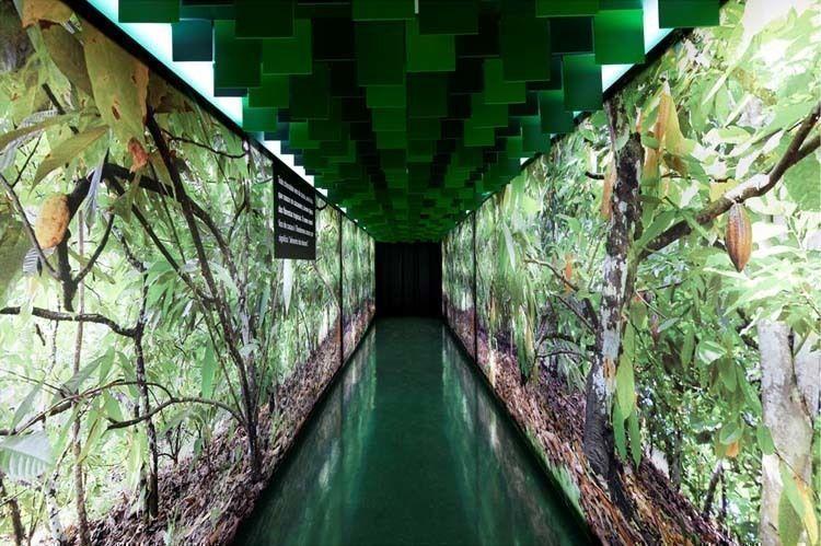 Interior promenade perspective. Cacao exhibition area