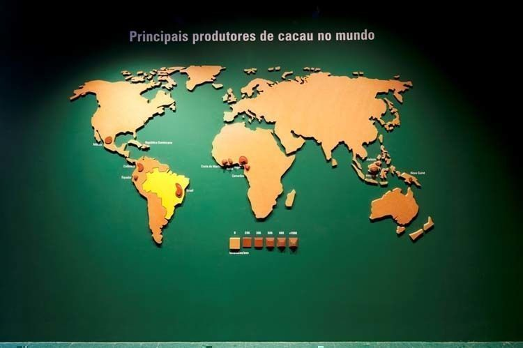 View of the world map of the Cacao