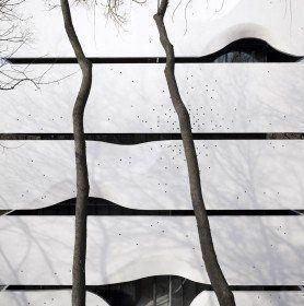 Photography: Yao Li