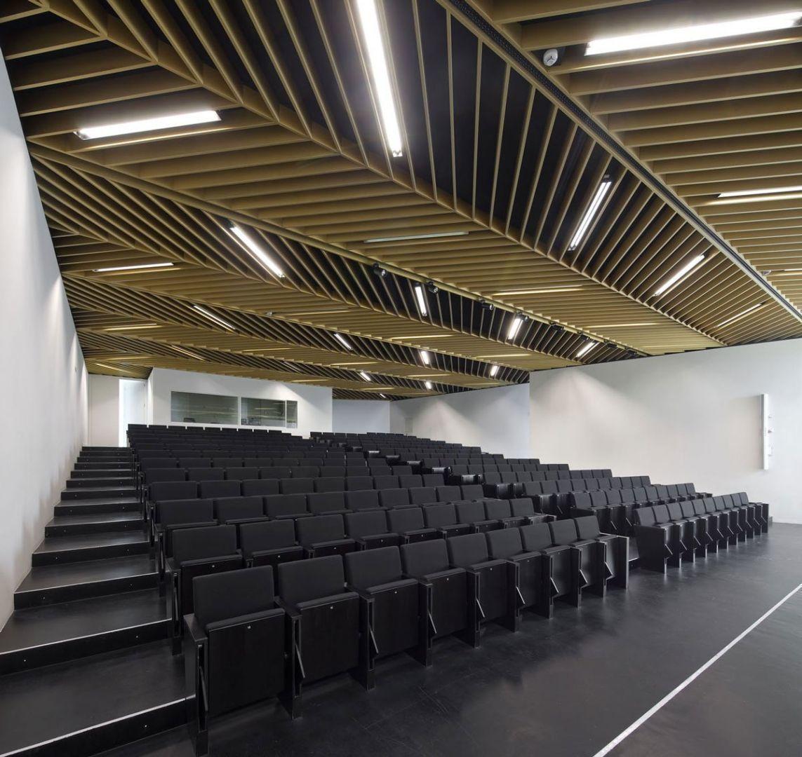 Facultad de ciencias de la salud en la universidad san for Kimberly hall creative interior design