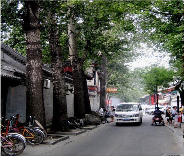 Boom-de-ciudades-asiaticas-5