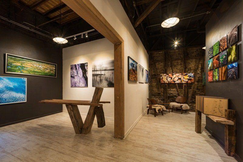 Se inaugura CLOSEUP CHILE: primera galería fotográfica de la naturaleza chilena