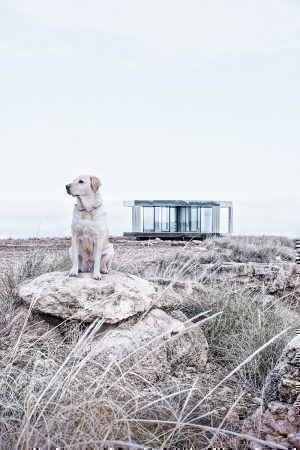 © Courtesy of Guardian Glass photo Gonzalo Botet